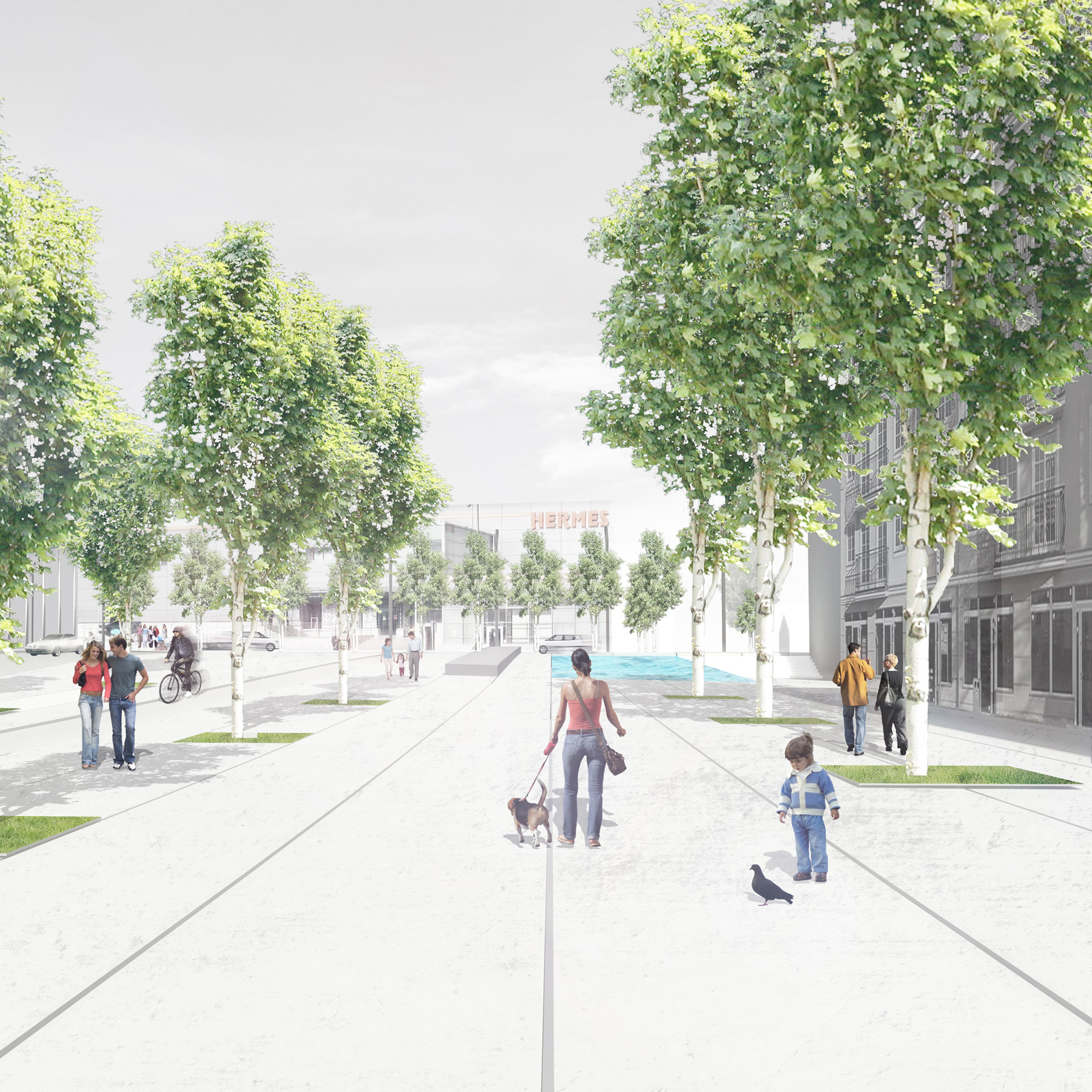 Masterplan Lesnica road